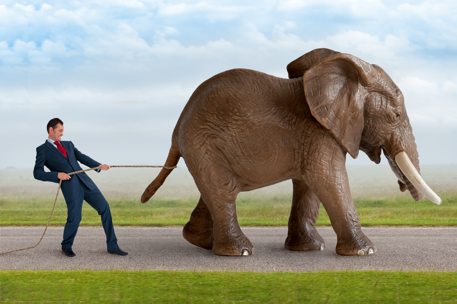 Asymmetrex Leading the Dosing Elephant Out of Regenerative Medicine