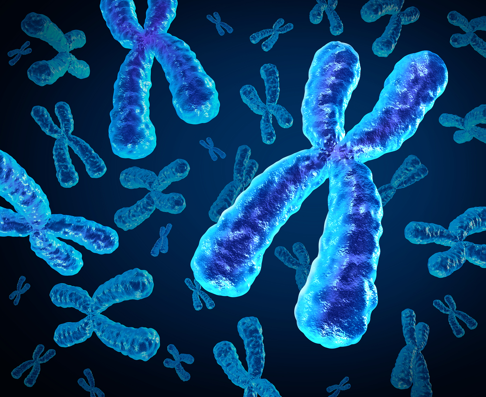 Asymmetrex Renews Efforts to Help Gene-Editing Companies