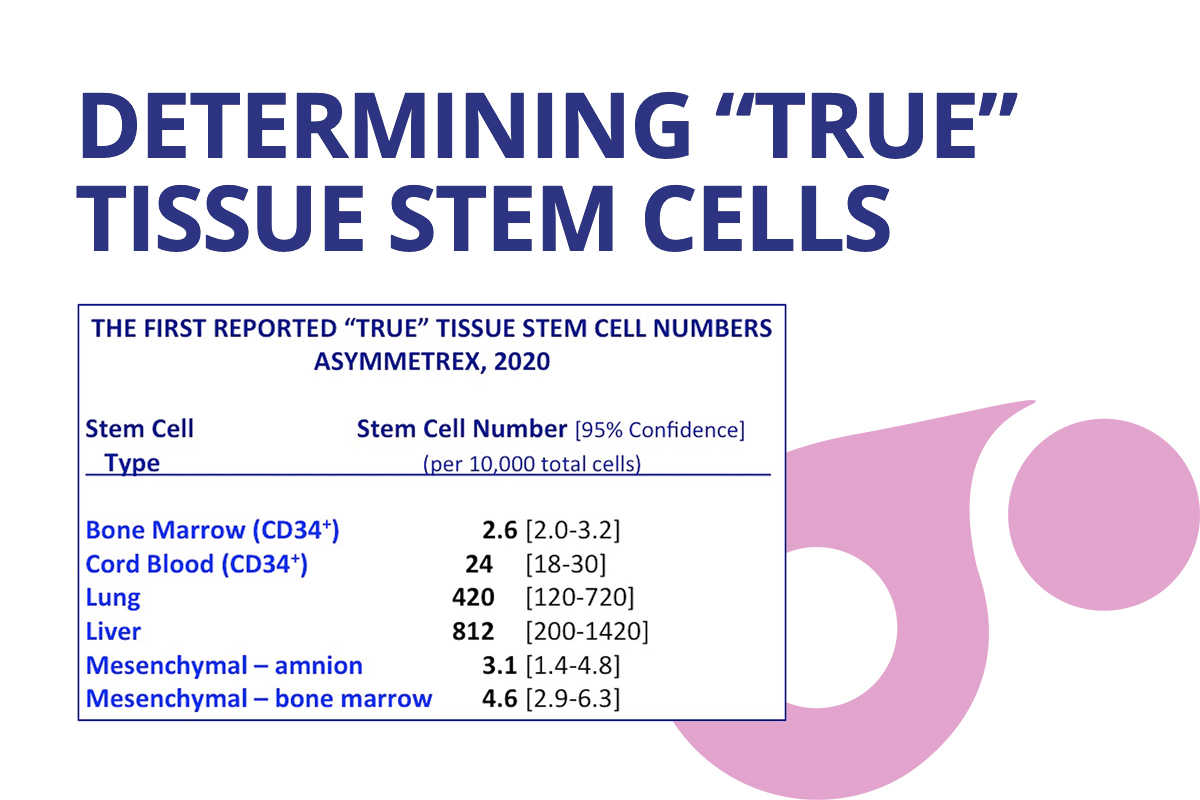 "Asymmetrex Reports the First Quantitation of ""True"" Tissue Stem Cells In Stem Cell History"