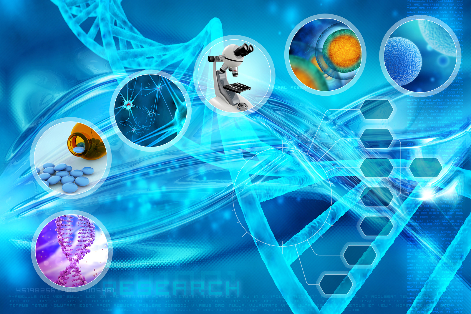 8 Principles for Ad Hoc Stem Cell Medical Research