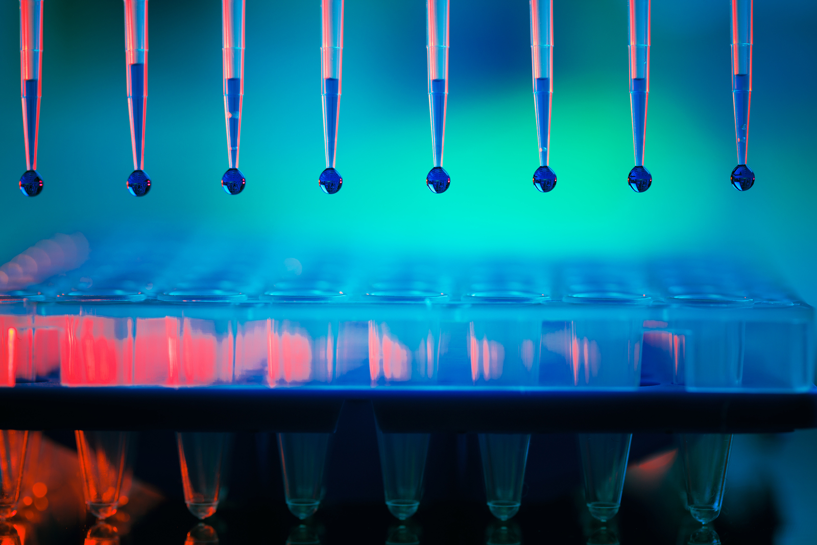 Why Gene Therapy Depends on Counting Stem Cells