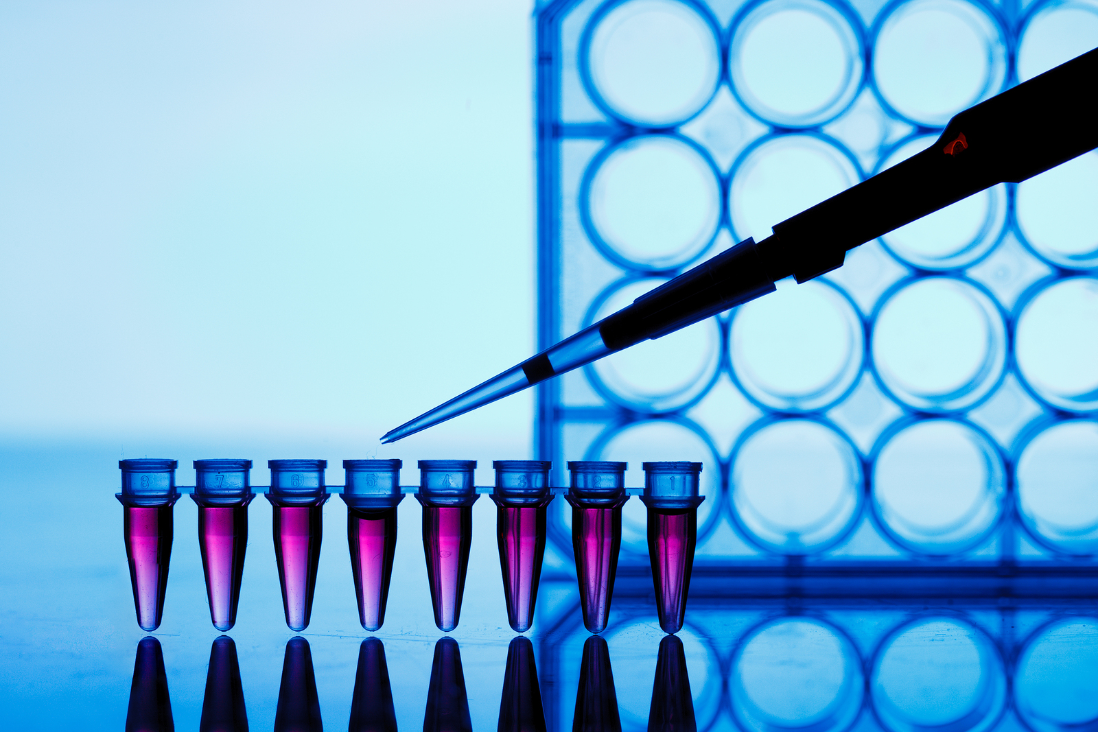 Asymmetrex Awarded Patent for Adult Stem Cell Counting