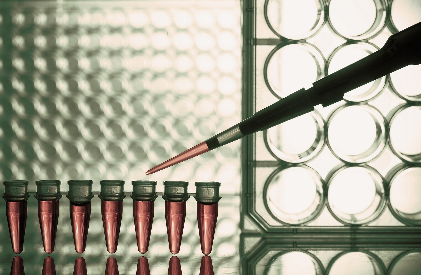 Introducing First Quality Control Test for Therapeutic Tissue Stem Cells