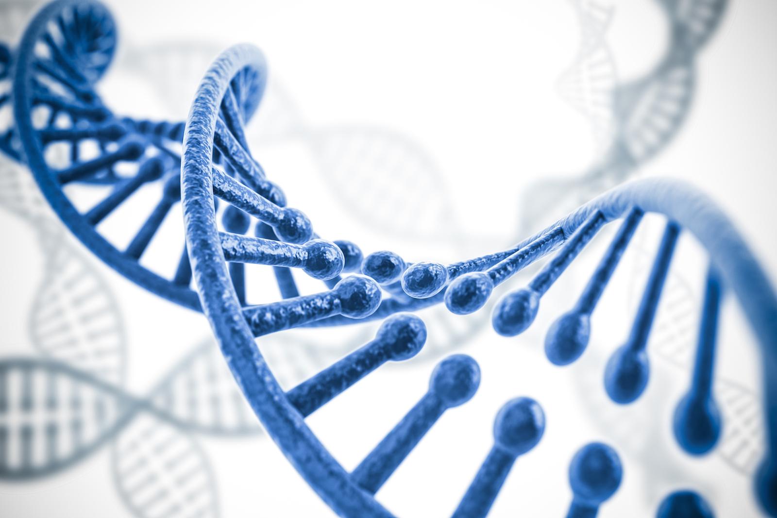Asymmetrex To Present Advances in Stem Cell Medicine