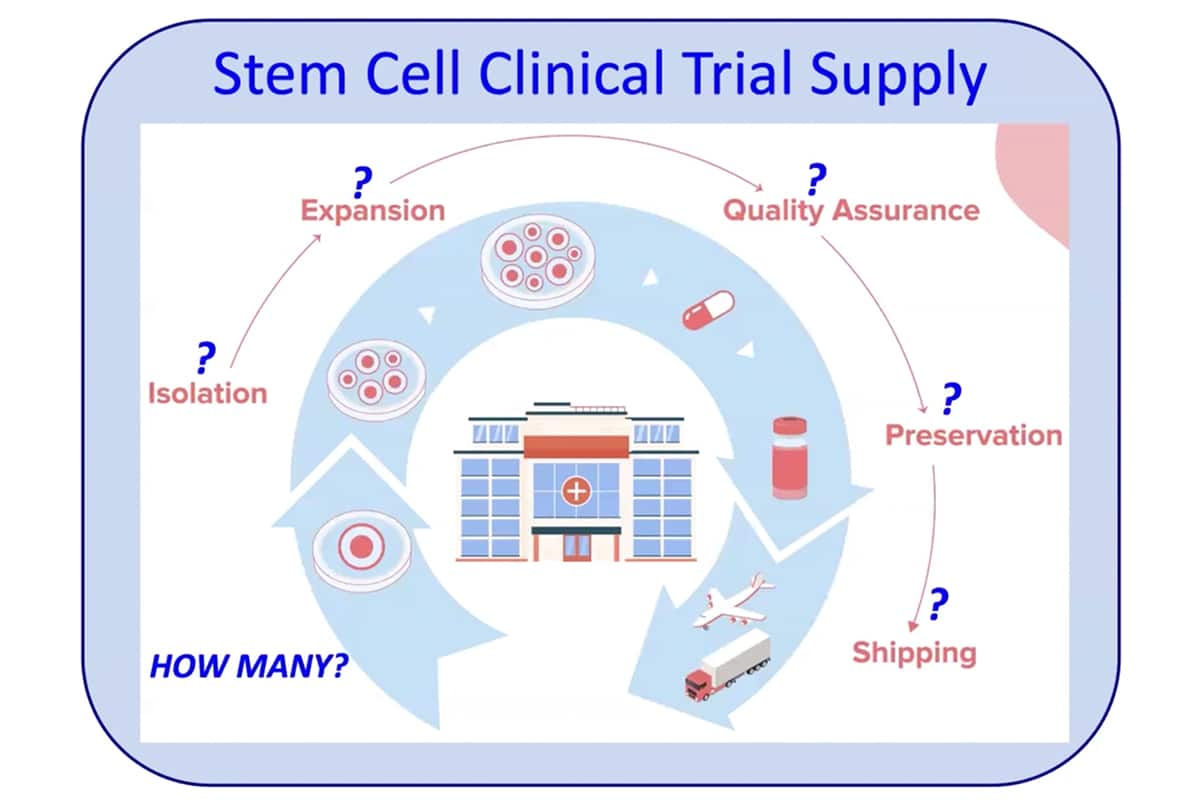 Asymmetrex Discusses a Near Horizon for Stem Cell Dosage in Stem Cell Therapy and Gene Therapy Clinical Trial Supply Chains